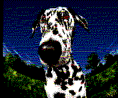 source:web/trunk/www/img2oric/output-dog.png